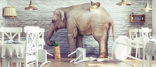 statuette éléphant tendance